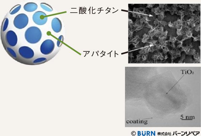 2つの成分「アパタイト 被覆二酸化チタン」が、菌を撃退!